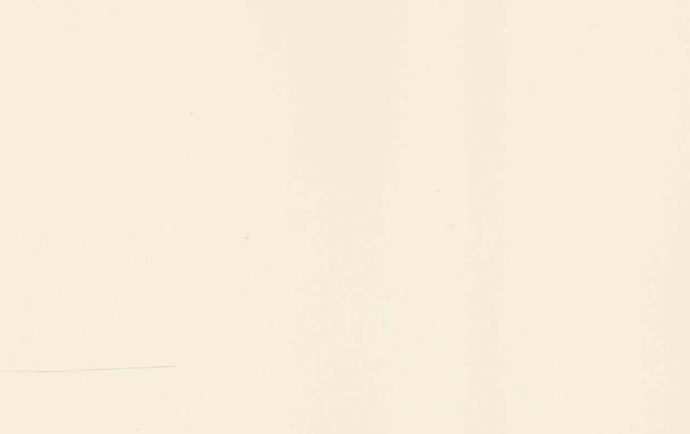 kalvo 046 Latte kiiltävä-1.jpg