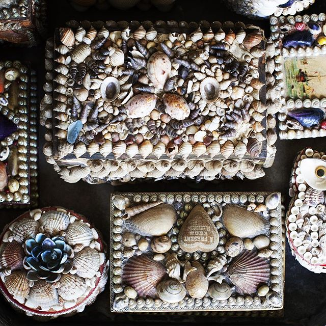 Collections! #cloverdesign #vintageshellboxes #shells #findyourclover
