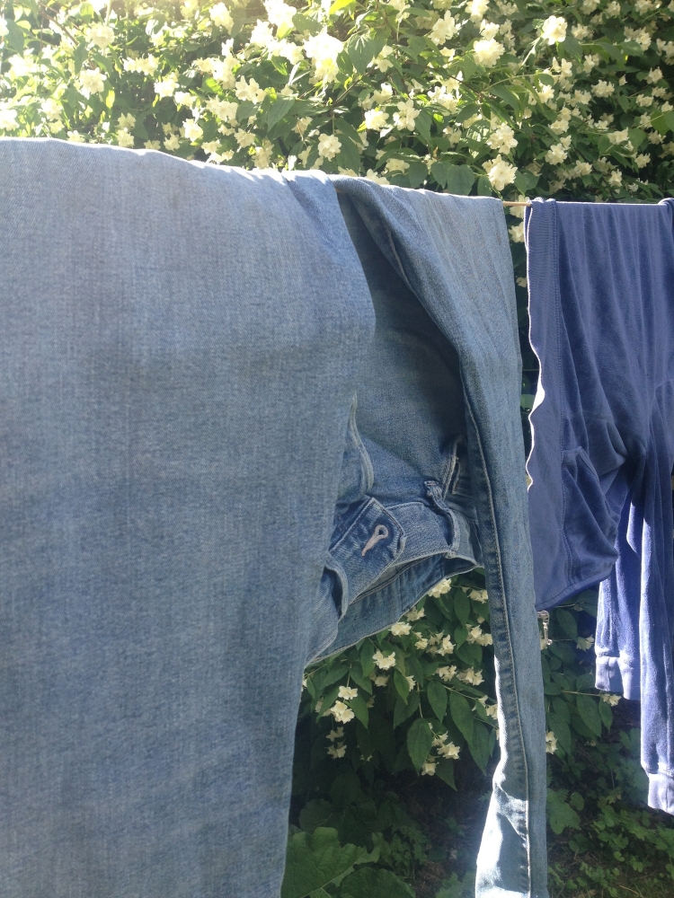 Everyday bliss.  Washing my son's jeans and letting them dry in the sun.  Feeling blessed.  Rethinking what success is.  Photo: IrmelinDrake
