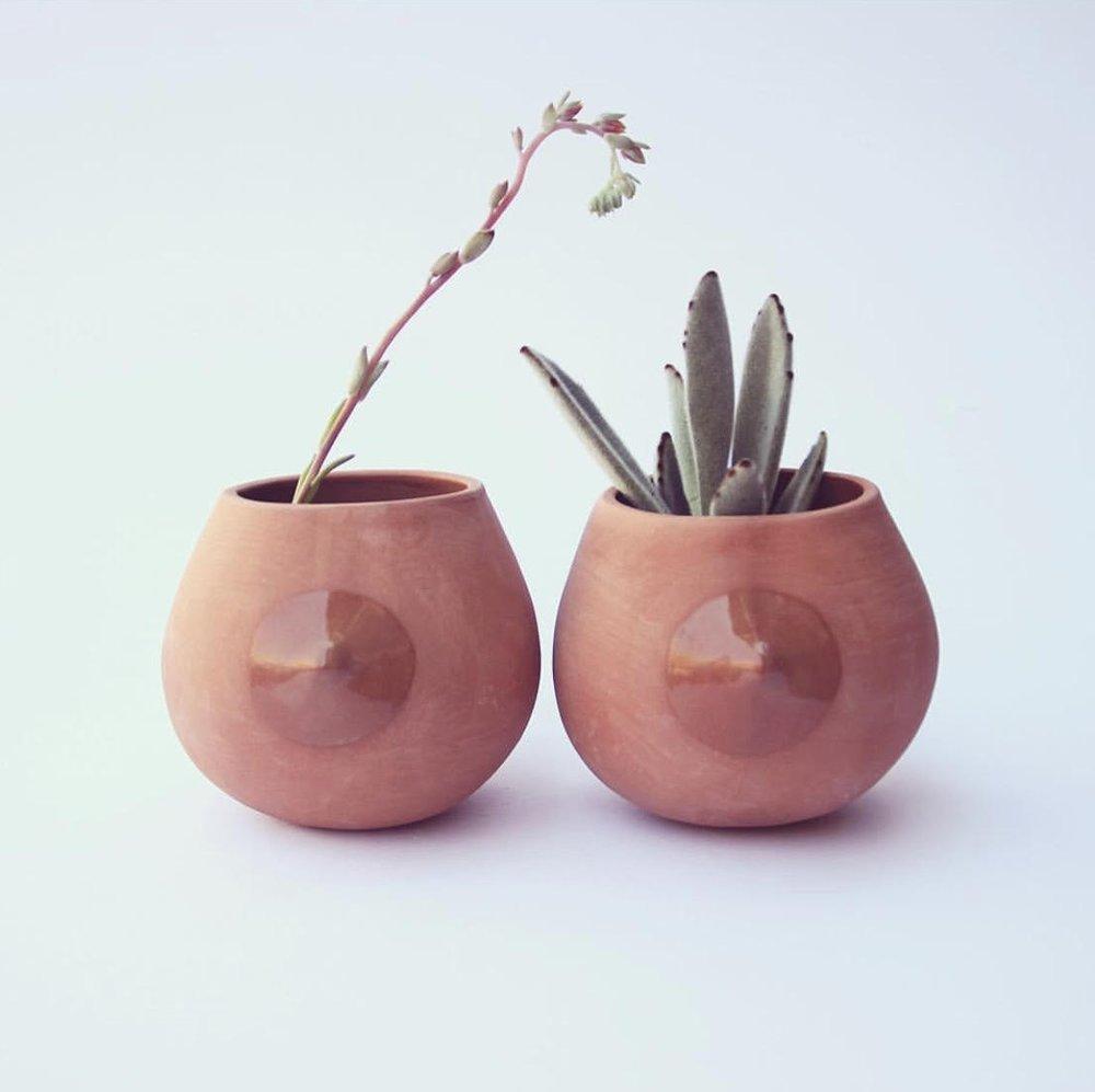 coral pink nip planter