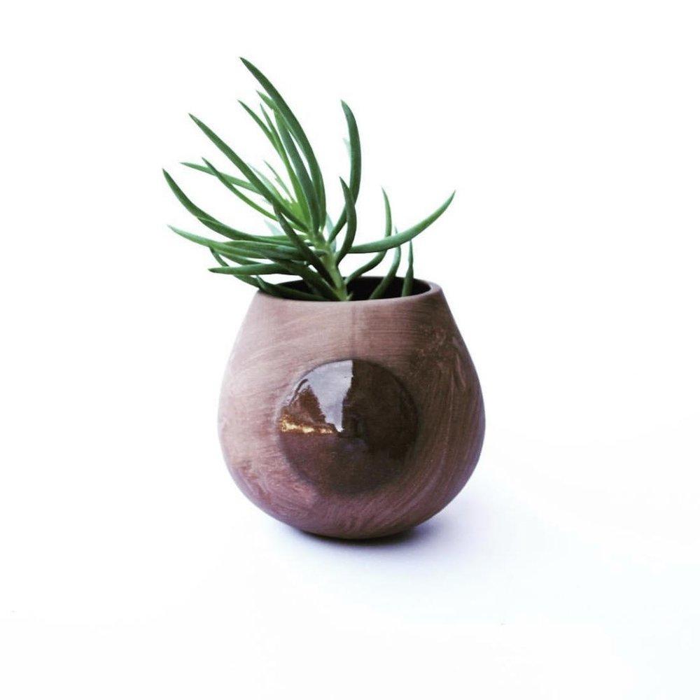cocoa nip planter