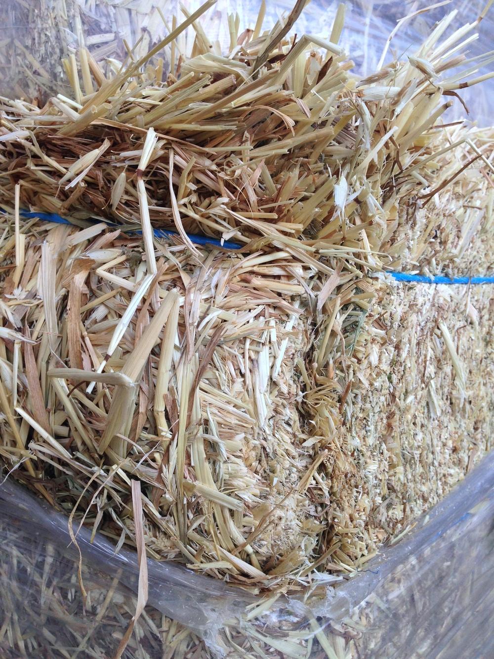 hay for sale barley hay oo1 (1).JPG