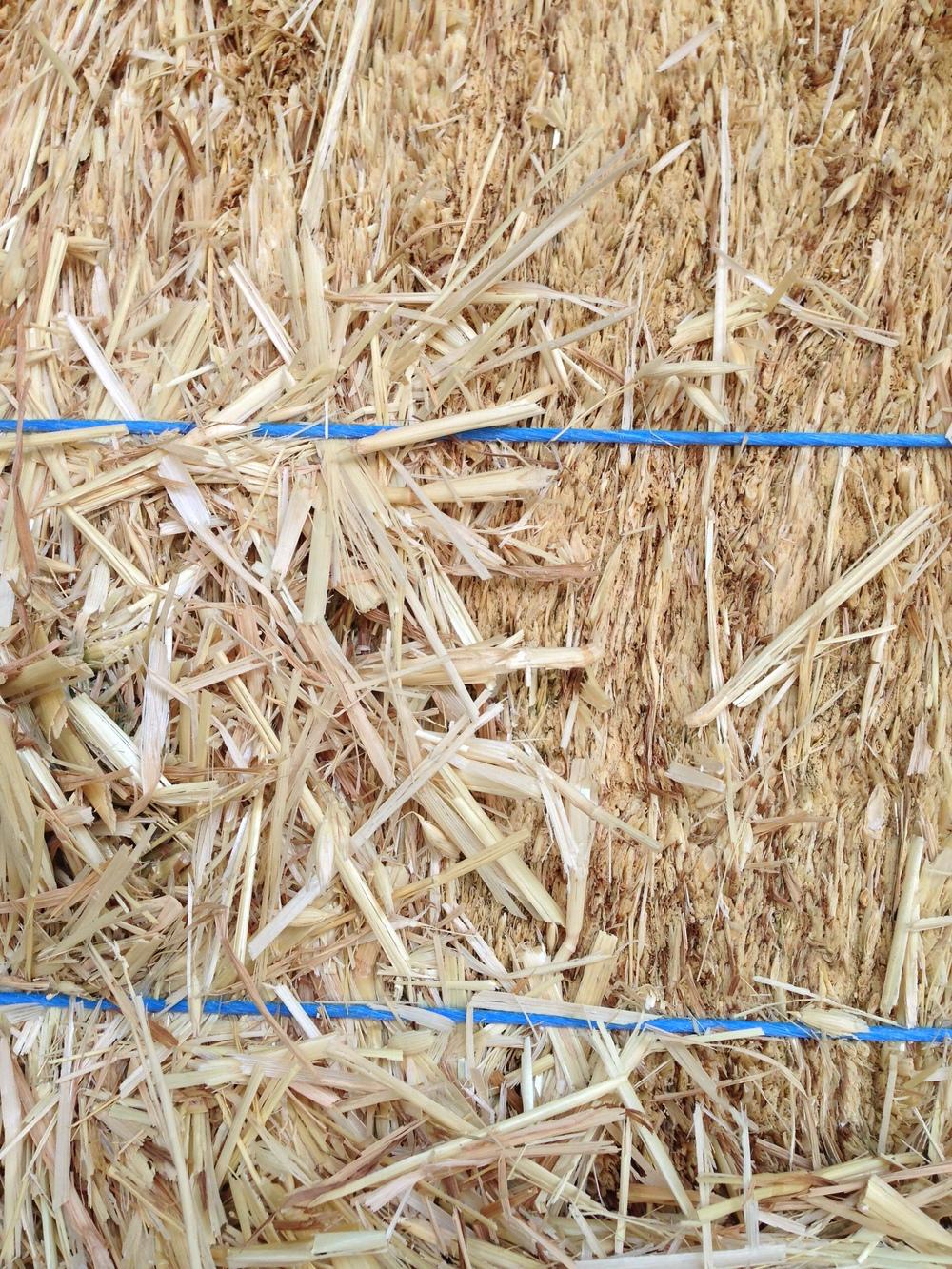 oat hay (6).JPG