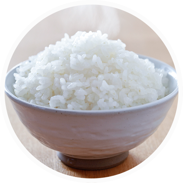Macronutrient - Carbohydrate