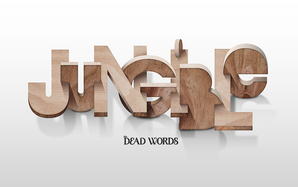 "JUNGIBLE My contribution ""The Dead Words"" project Lettering / Illustration / Blog."