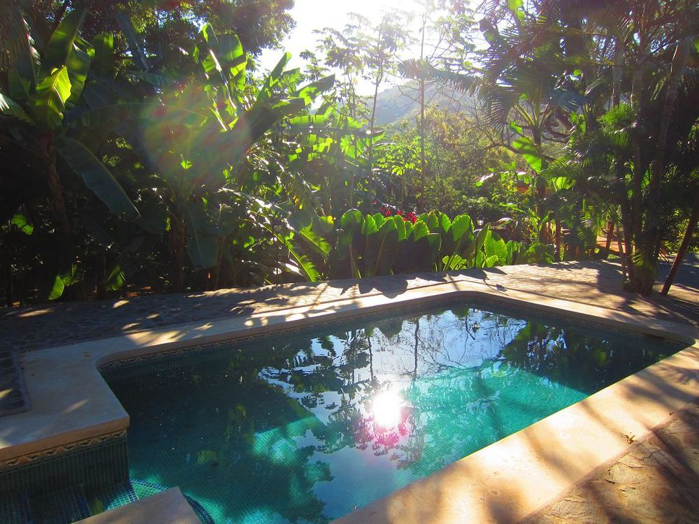 komp-FincaAustria_JungleLodge_Pool-3.JPG