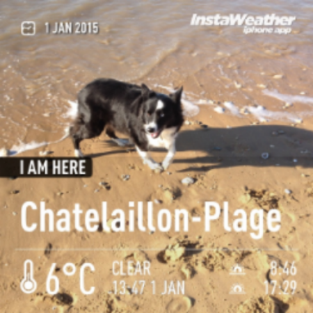 dog friendly walk beach plage