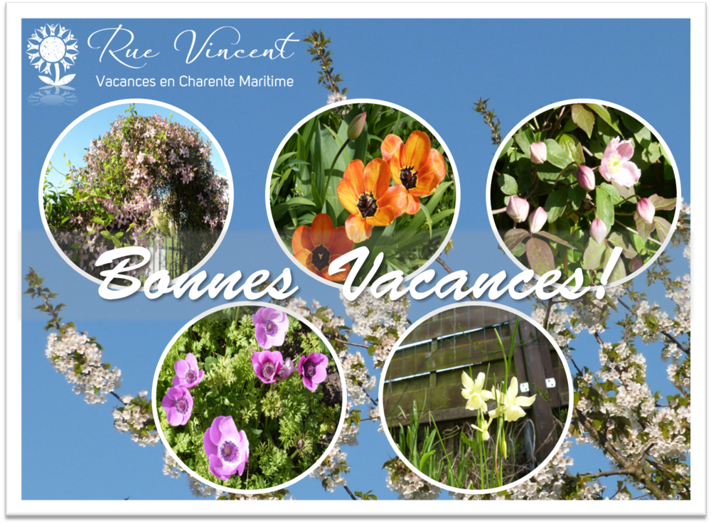 Gardens at Rue Vincent postcard flowers