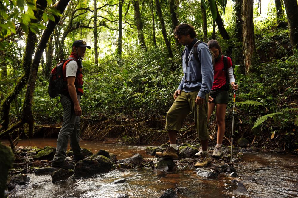 Trilhas a Pé (Trekking) em Brotas, SP - Caminhar por trilhas ao ar ...