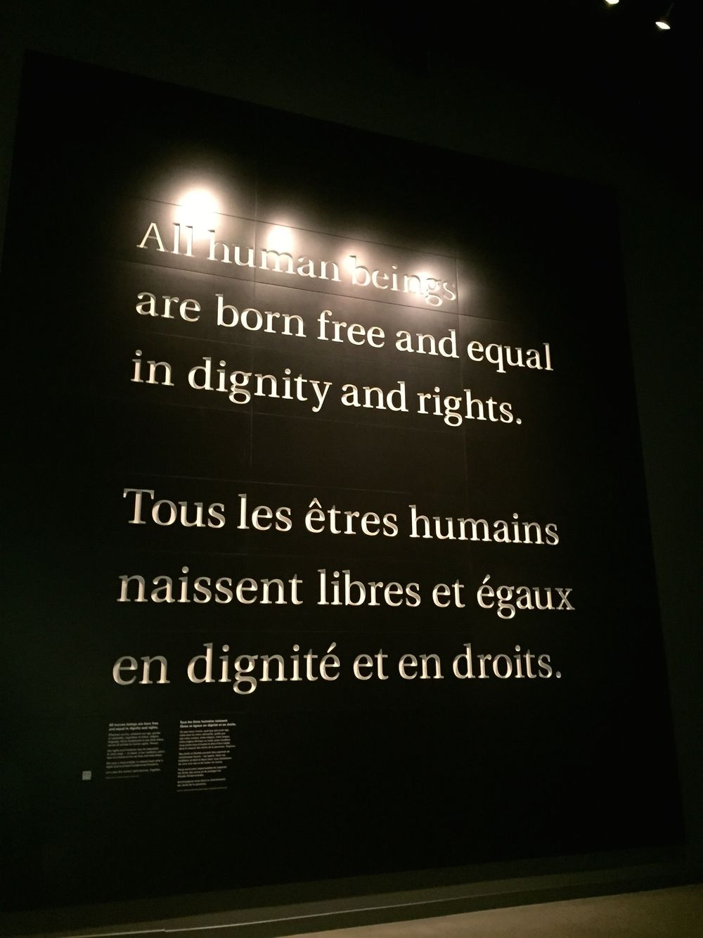"""All human beings are born free and equal in dignity and rights.""  Photo by Michelle Bredeson."
