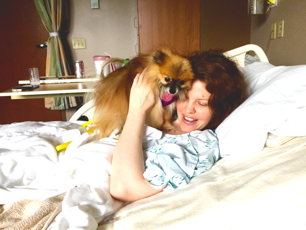 My local hospital allows visitors of the canine persuasion. My miniature Pomeranian, Samus, loved stopping by to give me power snuggles.