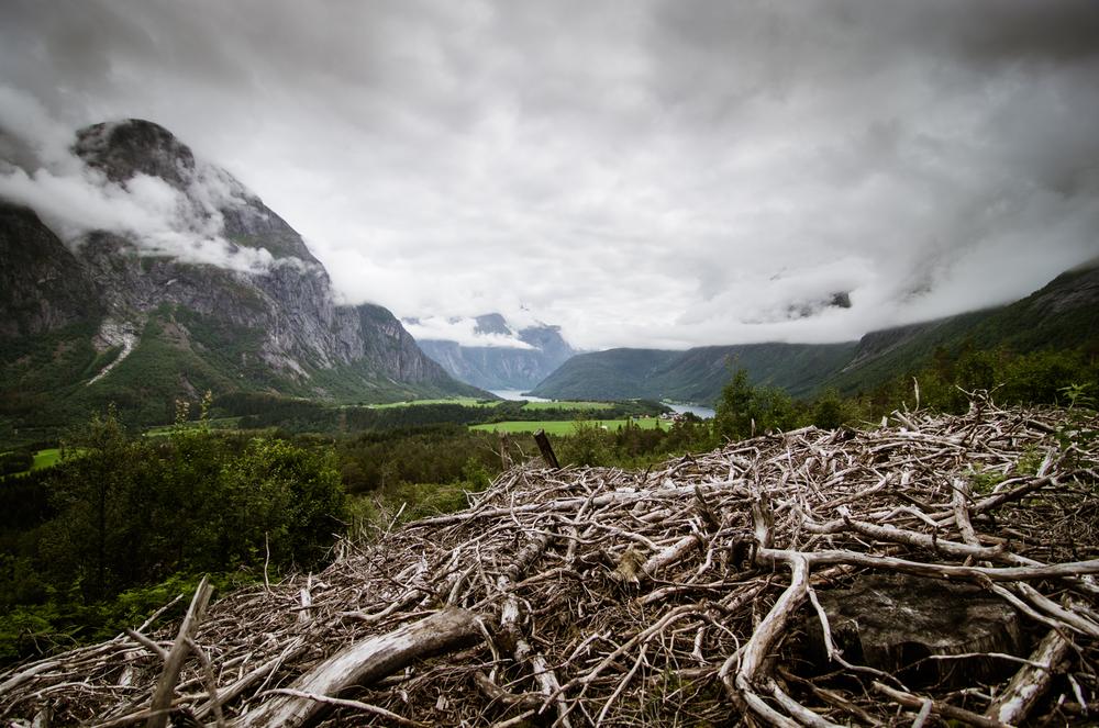 Norway-65.jpg
