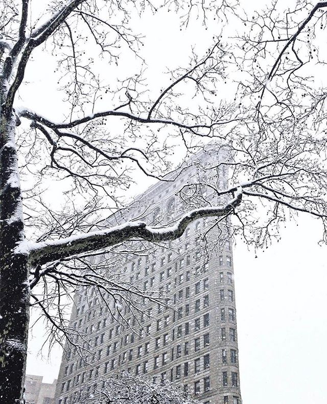 Snow scenes from New York #MadeInNYC // @newyorkcity