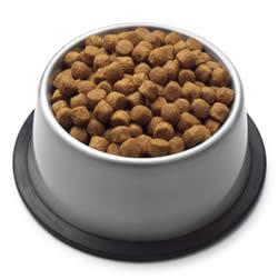 dog_food_dry.jpg