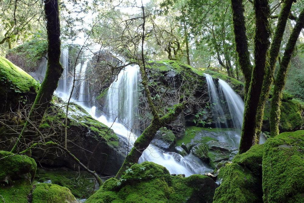 Cataract Falls Trail .jpg