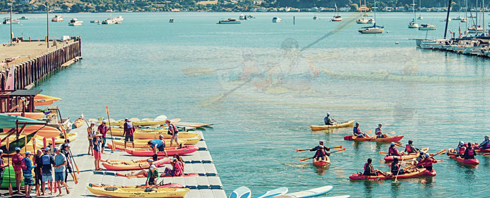 Marin Kayak and SUP.png