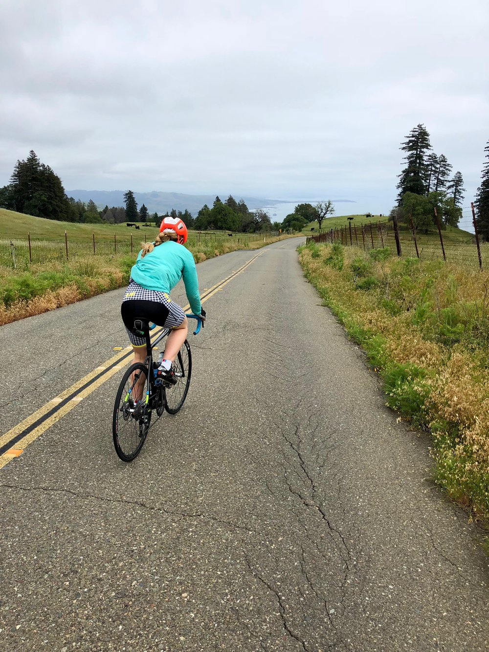 Jenna Newgard sport specific training.jpg