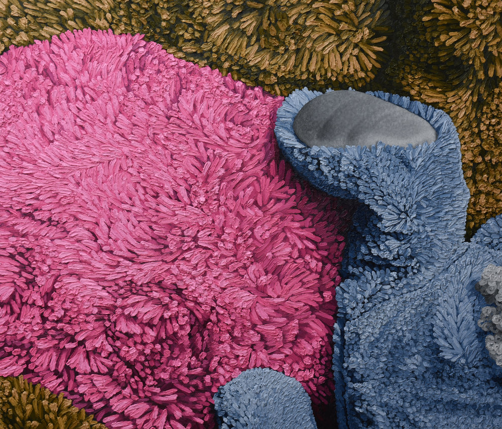 """""""Brown. Gray. Pink""""by Brent Estabrook 