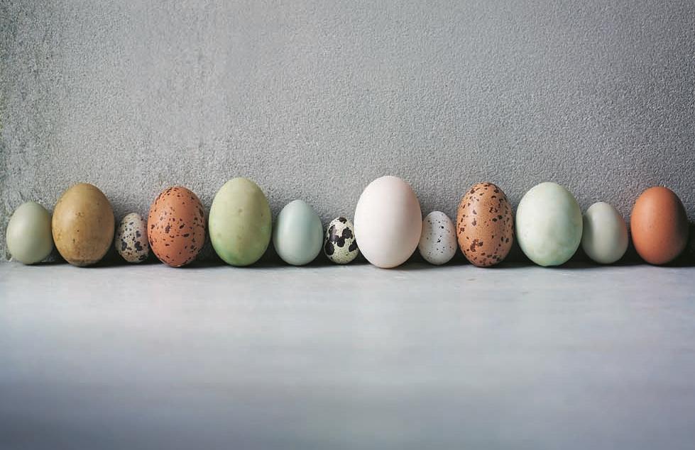 140117_003A_EggsOpener.jpg