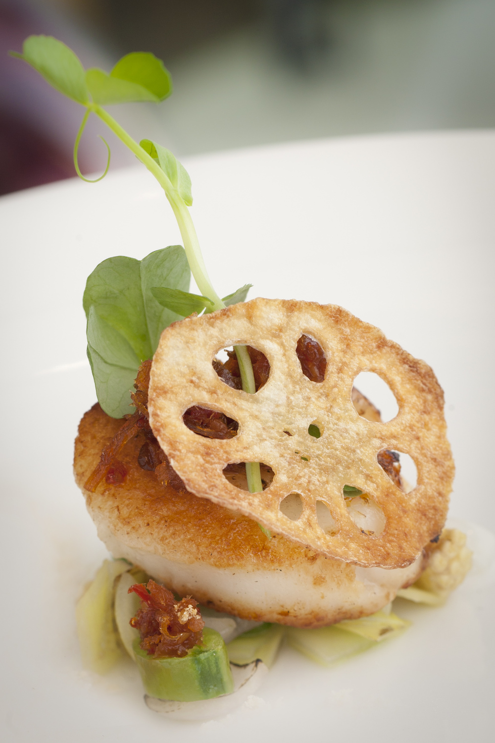 101a Scallops with XO Sauce 1.jpg