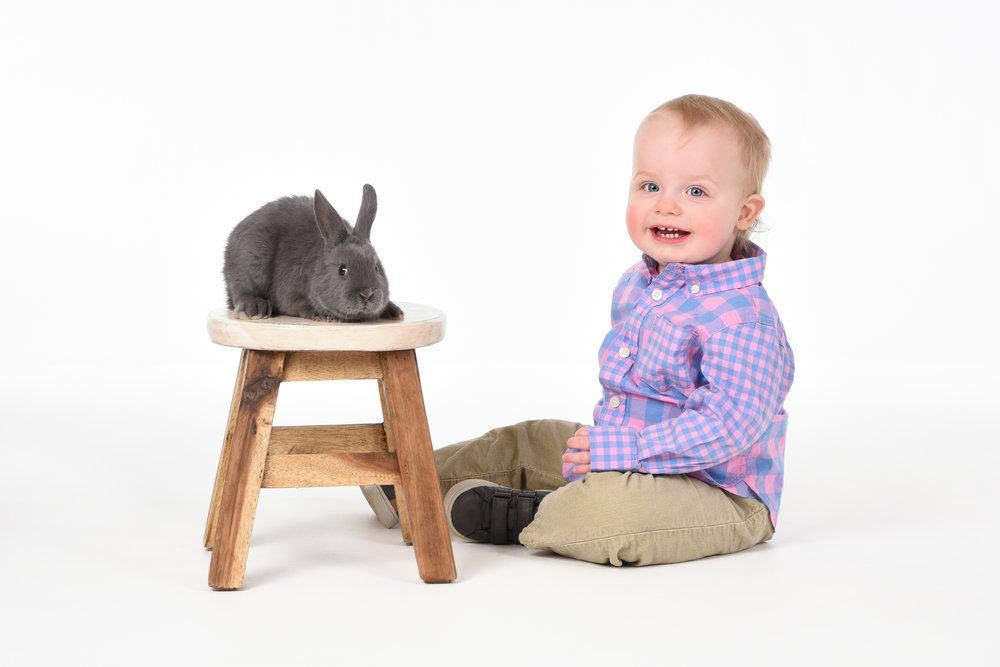 Bunny photos with Jordan Photography