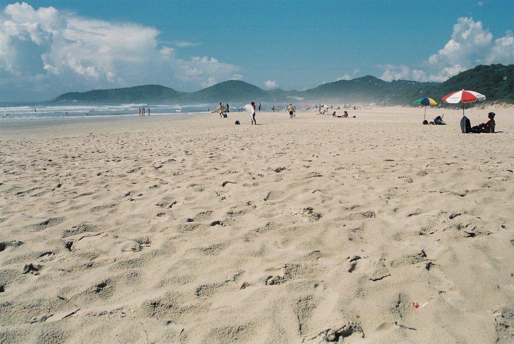 Beach, Rosa.JPG