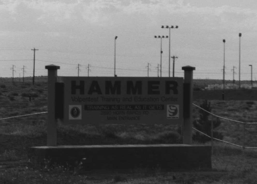 HAMMER (small).JPG