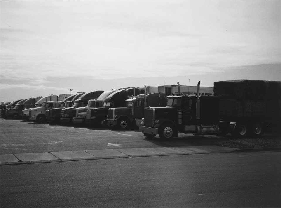 Trucks (small).JPG