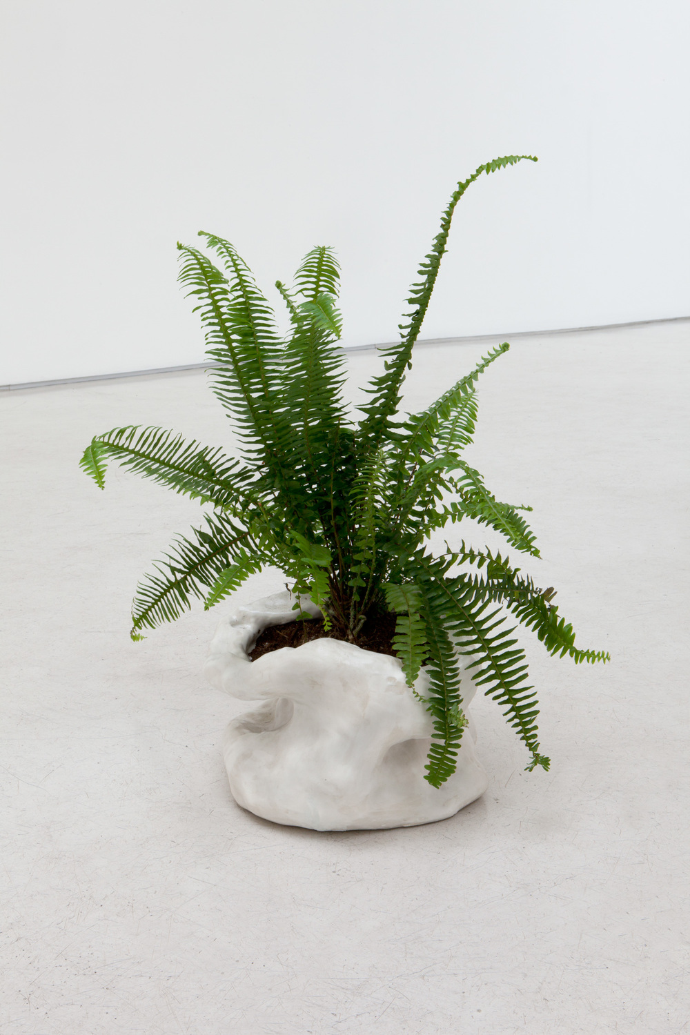 "Sasha Bergstrom-Katz,   Planter #2 with fern from ""Conversations: Eat shit,"" 2014   Glazed ceramic,   9 x 17 x 14 inches"