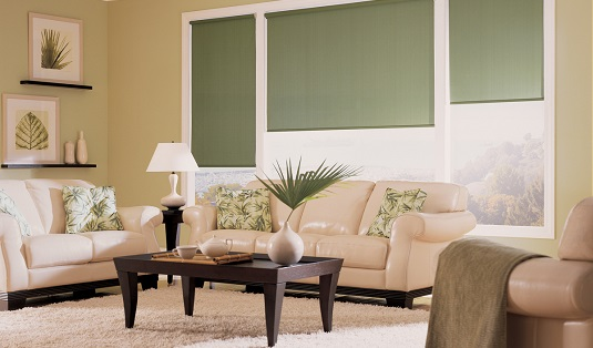 Designer-roller-by-HD__Roller-shade_Living-room-2.jpg