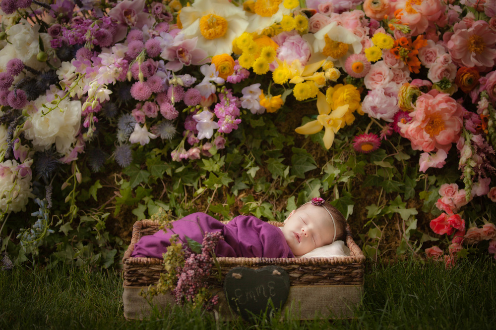 newborn-photography-nick-swisher-joanna-garcia-people-magazine-flower-bed.jpg