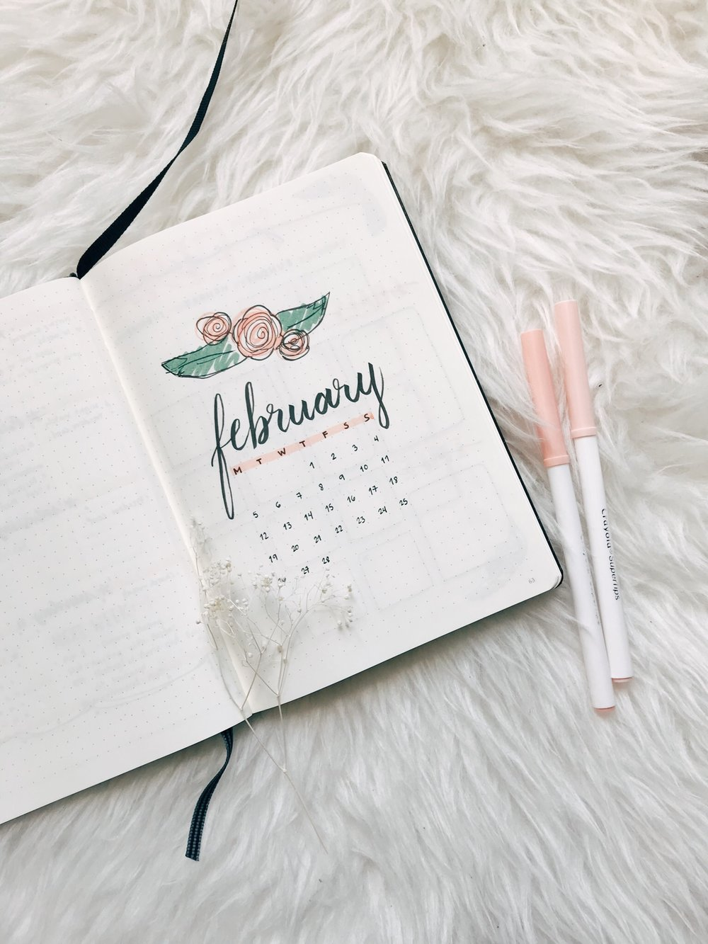 February Plan With Me - 2018