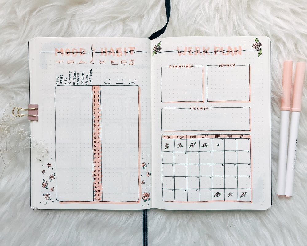 February 2018 -  Habit Trackers and Work Plan