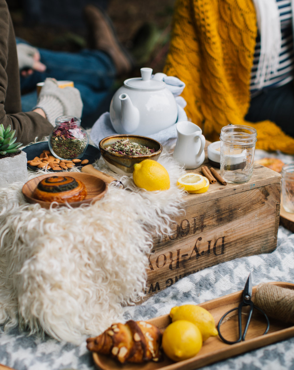 Winter_Picnic_Tea-2.jpg