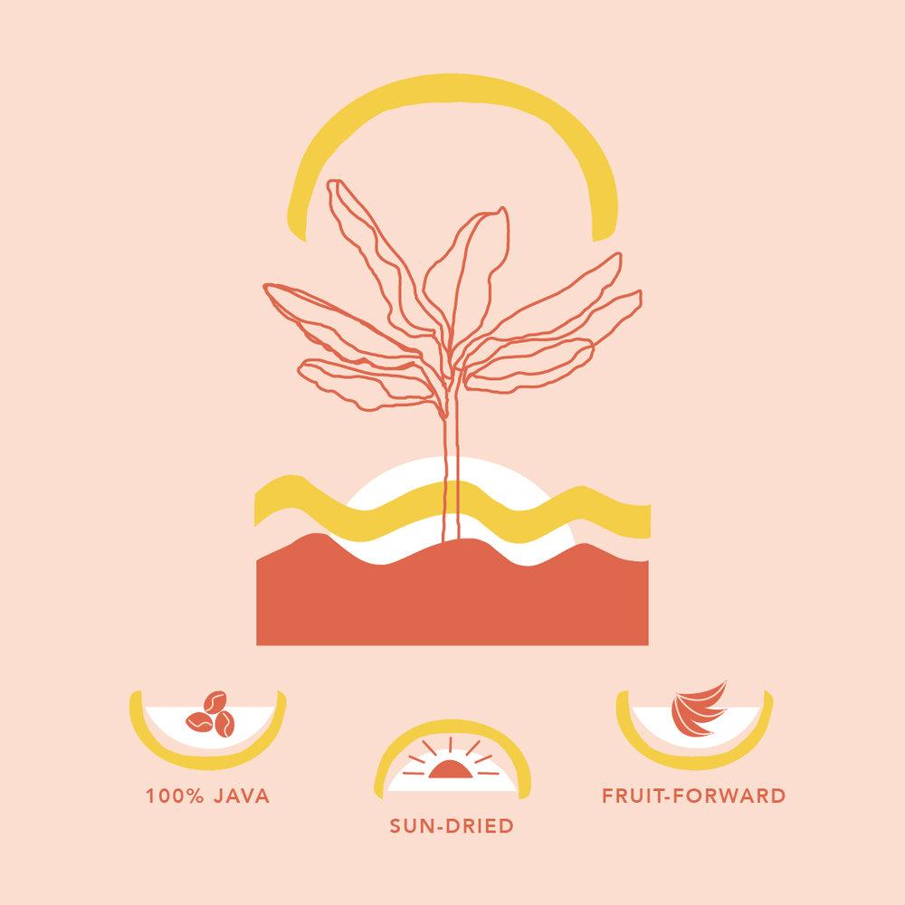 4_Bolivia_Infographic.jpg