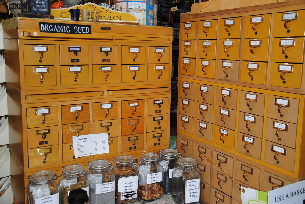 OUR ORGANIC BULK SEED SELECTION IS STORED IN REPURPOSED CARD CATALOGS