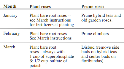 Dick Streeper's Calendar of Care for Roses, free download