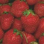 Sequoia Strawberries