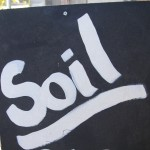 Soil - Copy