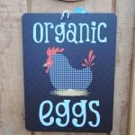 EggsOrganic (2)