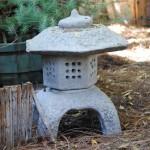 Bonsai_10-10-2014 (1)
