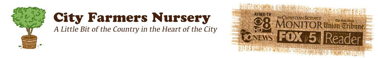 City Farmers Nursery