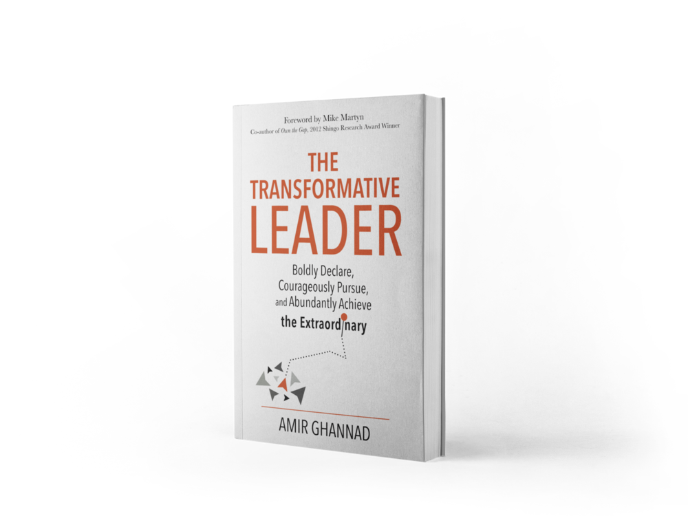 Learn more about the  The Transformative Leader   here .  Download a free chapter  here . Find more information about Amir's session  here .