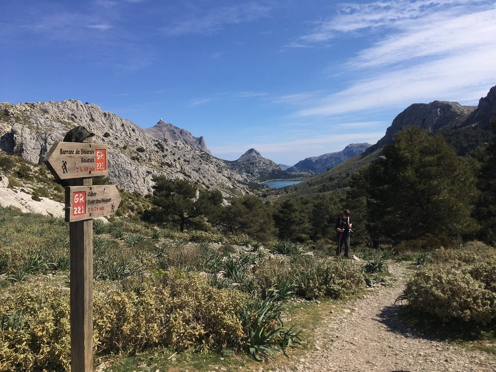 View of Cuber Reservoir, Great Circle Route, Mallorca Walks