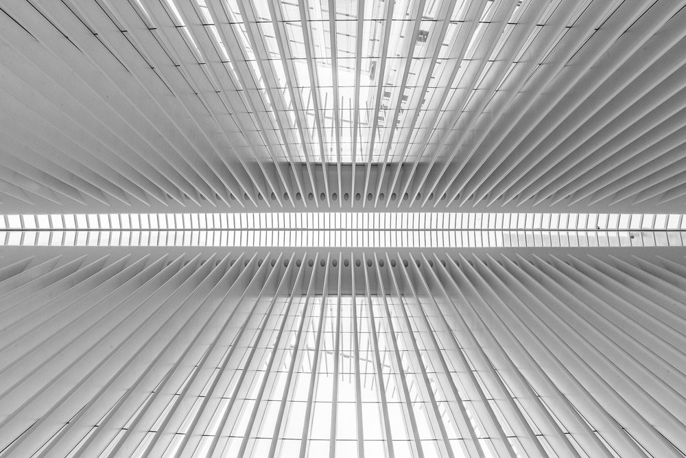 Ceiling detail of the World Trade Center Transportation Hub