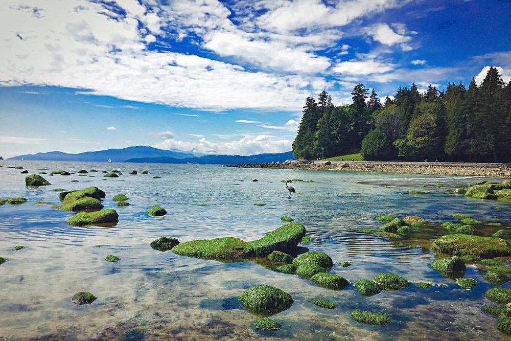 algae green / sky blue (at Vancouver, British Columbia)