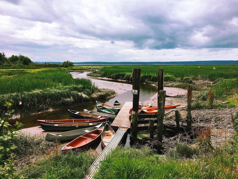 canoe season (at Stanwood, Washington)