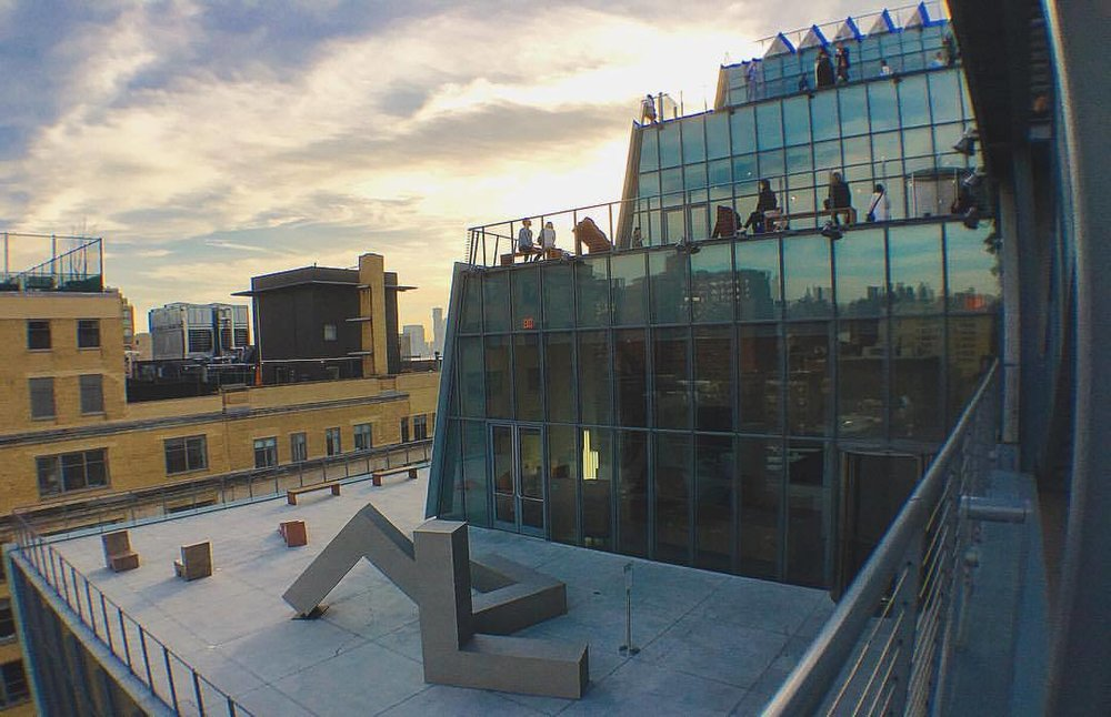 new vistas at the whitney (at Whitney Museum of American Art)