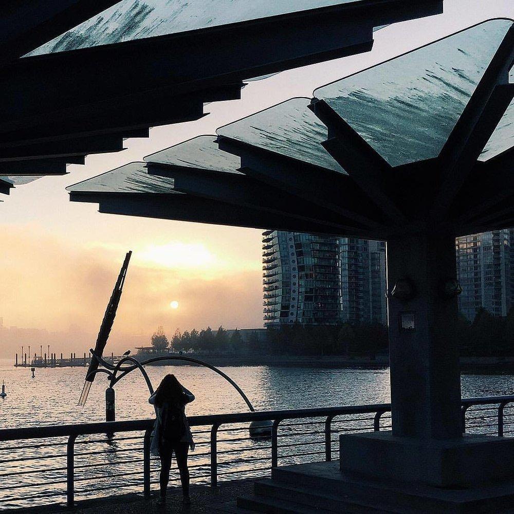 Fog, sunrise to sunset. (at David Lam Park)