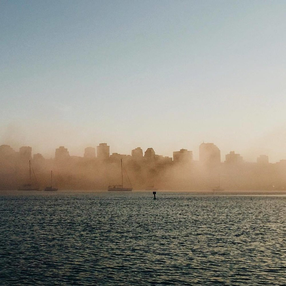 Days of Sun and Fog. (at David Lam Park)